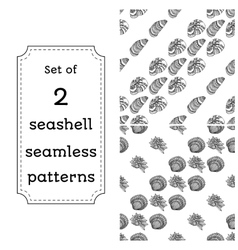 Geometric seamless pattern of seashells vector