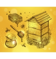 Honey mead beekeeping hand drawn apiculture vector