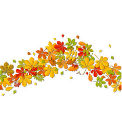 seamless border autumn falling leaf isolated on vector image vector image