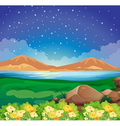 A view of the environment vector