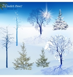 Winter trees set vector