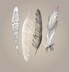 Graphic beautiful set of bird feathers on a brown vector image vector image
