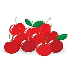Red cherries with stem vector