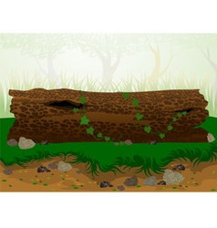 The timber vector image vector image