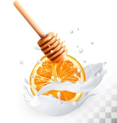 Orange and honey in a milk splash on a transparent vector