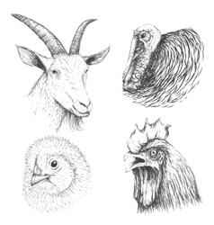Collection of farm animals face vector