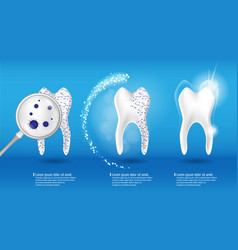 dental health concept set 3d realistic vector image vector image