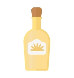 Tequila bottle vector image