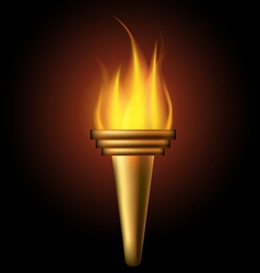 Burning torch vector image vector image