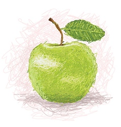 Closeup of a fresh green apple fruit vector