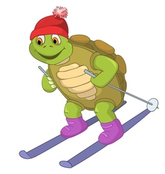 Funny turtle skiing vector