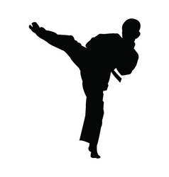 Karate boy kicking silhouette vector