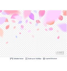 Pink pastel petals on transparent background vector