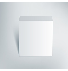 Blank isolated box mockup with shadow 2 vector image vector image