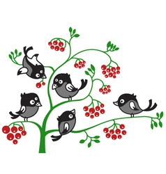 Of birds on a branch vector