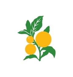 Branch Orange Sign vector image