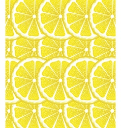 Lemon Slices Background vector image vector image