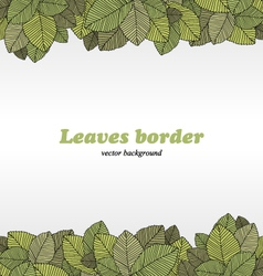 Borders of foliage vector