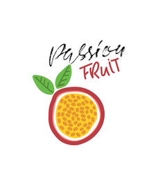 Passion fruit abstract  vegan food vector
