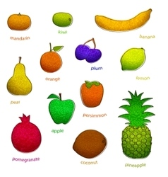Fruit set with texture vector
