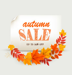 autumn sales card with colorful leaves vector image vector image