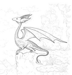 Dragon coloring vector