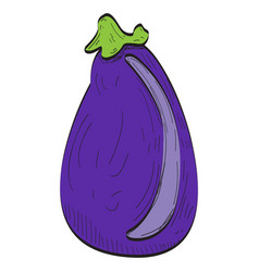 isolated eggplant vector image vector image