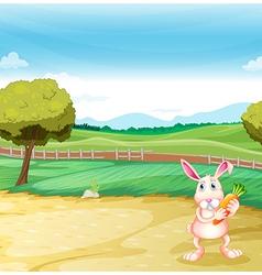 A bunny holding a carrot vector