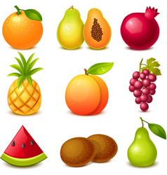 Fruit set vector image vector image