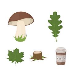 Oak leaf mushroom stump maple leafforest set vector