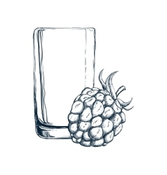 Glass of juice and blackberry design vector