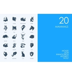 Set of blue hamster library mammals icons vector