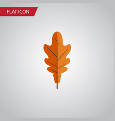 Isolated frond flat icon linden element vector