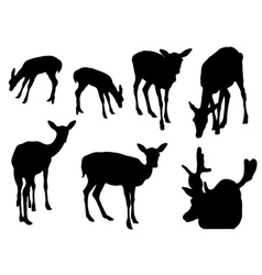 Collection of silhouettes of deer vector image vector image