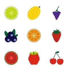 Fresh fruit icons set flat style vector