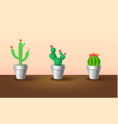 Decorative exotic plants set vector