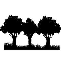 Three tree field silhouette branch trunk foliage vector