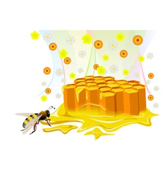 Bee and honeycomb with floral honey vector