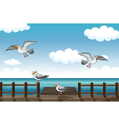 A flock of birds looking for foods vector image
