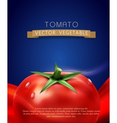 Background with splashes waves of red tomato juice vector