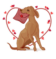 Dog with a valentine dog postman vector