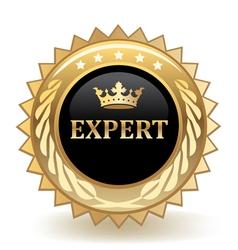 Expert badge vector