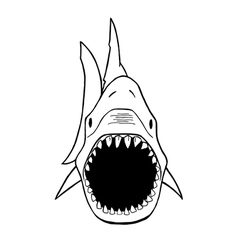 Shark silhouette vector
