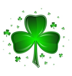 Shamrock  isolated on white background vector image