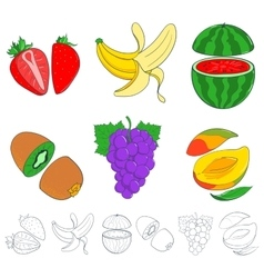 Set of painted fruits vector