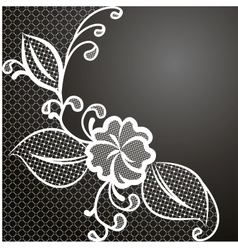 lace corner white vector image vector image