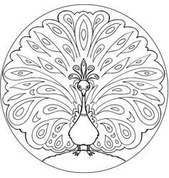 coloring peacock mandala vector image