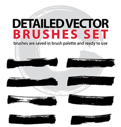 Set of highly detailed brush strokes object vector image