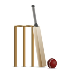 Cricket bat ball and wicket vector