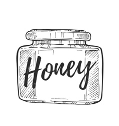 Honey jar freehand pencil drawing vector